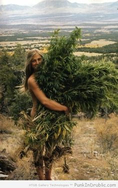 The Original Witch Of Weed