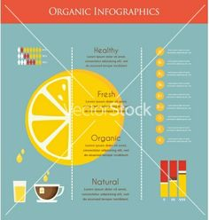 Lemon and organic infographics vector by LipMic on VectorStock®