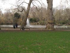 St.James Park #London