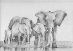 elephant paintings on beautiful beach - Google Search