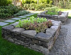 Raised beds from stone. Would love to do this--a glorified herbal garden. :)