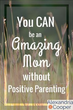 Positive Parenting isn't the ONLY way to be a good parent. You can be a loving and authoritative parent, and do it YOUR way! #parenting
