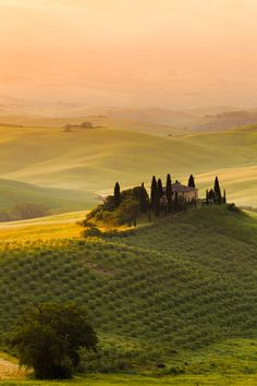 Belvedere Val d'Orcia Tuscany Italy by Reinhold Samonigg