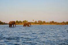 Sunset River Cruise, Victoria Falls, Zimbabwe