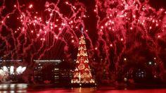 El árbol flotante de Río de Janeiro iluminado por los fuegos artificiales que lo inauguraron