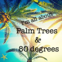 I'm all about palm Trees & 80 degrees! And so is Indian Rocks Beach! I'm all about palm Trees & 80 degrees! And so is Indian Rocks Beach! Indian Shores Beach, Indian Rocks Beach, Beach Please, No Bad Days, I Love The Beach, Beach Signs, Island Life, Beach Bum, My Happy Place