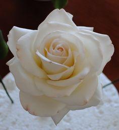 - A single gumpaste rose
