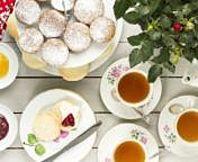 6 Amazing Benefits of Tea | Kristin Kirkpatrick, M.S., R.D., L.D.