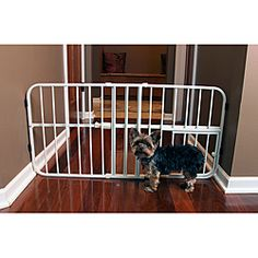 @Overstock - Close off prohibited areas in your home with this durable expandable pet gate from Carlson. The Mini Tuffy is lightweight and perfect for keeping small dogs out of out-of-limits areas, and it expands to fit the width of any doorway or hallway. http://www.overstock.com/Pet-Supplies/Carlson-Mini-Tuffy-Metal-Expandable-Pet-Gate/6708825/product.html?CID=214117 $26.99