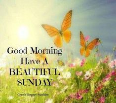 Good morning have a beautiful sunday pictures, photos, and images Good Morning Sunday Pictures, Sunday Morning Quotes, Sunday Wishes, Good Morning Happy Sunday, Happy Sunday Quotes, Blessed Sunday, Good Morning Friends, Good Morning Messages, Good Morning Greetings