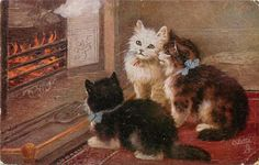 HOME SWEET HOME  three kittens enjoying an open fire