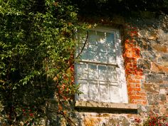 A window at Rowallane Gardens, a National Trust property in Saintfield, Co Down National Trust, Northern Ireland, Windows And Doors, My World, Gates, Heart, Summer, Painting, Life