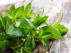 Here are 11 herbs that help in weight loss and increase metabolism also. Herbs like ginseng, oregano, peppermint, spearmint help reduce belly fat and remove toxins. Cramp Remedies, Remedies For Menstrual Cramps, Home Remedies, Natural Remedies, Herbal Remedies, Peppermint Plants, Peppermint Leaves, Peppermint Oil, Weight Loss Herbs