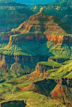 Beauty Of NatuRe: Layers of Beauty, Grand Canyon National Park, Ariz. All Nature, Amazing Nature, Beautiful World, Beautiful Places, Formations Rocheuses, Photos Voyages, Grand Canyon National Park, Best Photographers, New Mexico