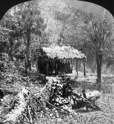 Florida Memory - Indian camp on the Ocklawaha River - Florida Vintage Florida, Old Florida, State Of Florida, Central Florida, Florida Style, Florida Usa, Florida Travel, Camping World, Go Camping