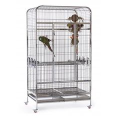 Empire Large Bird Cage 3157 Prevue Pet Products Large Bird Cages, All Stainless Steel, Cockatoo, High Resolution Photos, Pet Products, Door Design, Pet Birds, Make It Simple, Locks