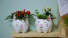 Aprenda a fazer um cachepô de gatinho usando garrafa pet Os vasinhos ficam um charme de usados para plantas. Confira no vídeo!