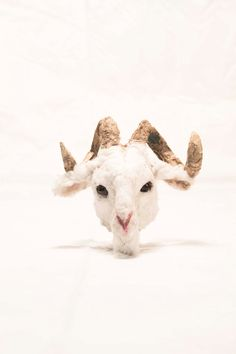 Sculptures of animal heads to put dolls or simply by ValeriaDalmon