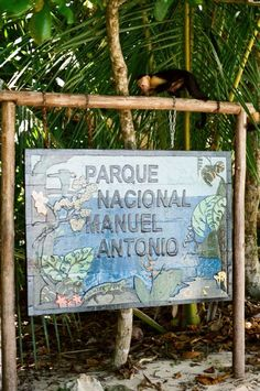 manuel antonio national park, costa rica - my first weekend with monkeys running on the roof! Cost Rica, Places Ive Been, Places To See, Puntarenas, Travel Tours, Pacific Coast, Central America, National Parks, English Homework