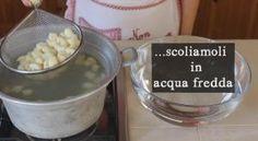 GNOCCHI DI RICOTTA FATTI IN CASA RICETTA FACILE | Fatto in casa da Benedetta Rossi Ricotta Gnocchi, Chorizo, Dog Bowls, Recipes, Zucchini, Ripped Recipes, Cooking Recipes