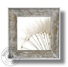 """14"""" x 14"""" dandelion canvas artwork print in a white washed weathered reclaimed cypress wood 22"""" x 22"""" frame. Hangs in both directions. Not made from dingy pallet wood. Made in the USA. Visit www.BeachFrames.com"""