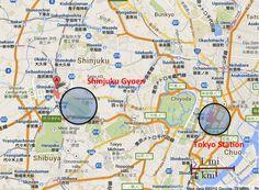 Imagini pentru parcul  shinjuku gyoen