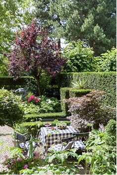 Gezellige romantische klassieke tuin Front Porch Seating, Patio Seating, Boxwood Topiary, Topiaries, Garden Landscaping, Landscaping Ideas, Backyard Ideas, Greenhouse Shed, Rustic French Country