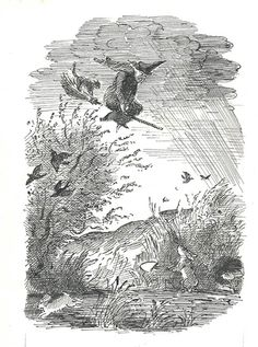 Swooping Down by Edward Ardizzone £3750 Edward Ardizzone The Witch Family Black Ink Published Published by: Constable Young Books Ltd Date of publication: 1962 Book author: Eleanor Estes