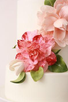 Portfolio of Penelope d'Arcy Grahams'Sugar Flowers & Wedding Cakes  sugarcraft courses.