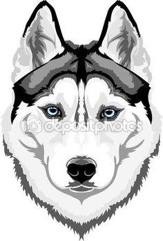 Husky siberiano — Vector stock © skvortsova #64627531