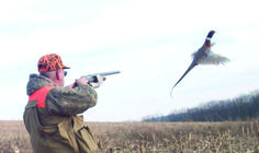 Want to be a successful small-game hunter? Here's the seven-letter key to finding the best places to hunt.