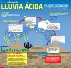 La lluvia ácida ocasiona los principales problemas ambientales en las metrópolis del mundo, a consecuencia de la falta de control de emisiones químicas por parte de las industrias. Conoce más sobre el fenómeno. #Infographic