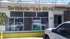 Por subir un peso el kilo suspende Profeco la venta en la Tortillería Los Olivos | El Puntero