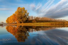 Autumn Reflection this morning in Holland by betuwefotograaf