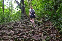 The Travel Hack in #Dominica
