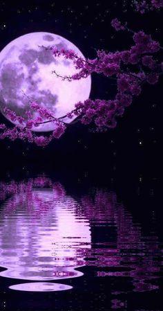 #water #reflection #moon #purple #animated #gif