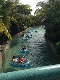 This was our fave thing to do in Atlantis. See full review here: http://www.bellissimakids.com/atlantis-the-bahamas/