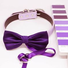 Dog Ring Bearer Bow Tie Collar, bow attached to leather collar, Dog of honor Dog Wedding, Wedding Rings, Wedding Ideas, Wedding Planning, Wedding Decorations, Purple Bow Tie, Purple Rings, Bow Tie Collar, Dog Bows