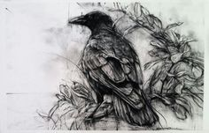 Crow by April Coppini