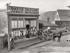 "Family Butcher: 1910 ""David Taylor's butcher shop, Wadestown, showing decorated carcasses and horse-drawn delivery cart. David Taylor in doorway."" Glass plate negative by Frederick James Halse"