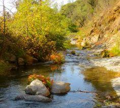 California - Yoga + Health Retreat, R-Aston Retreat