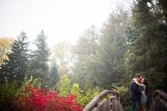 Wedding & Engagement Photography Locations Toronto: A guide to the BEST 50 locations for engagement and wedding photos in Toronto and the GTA Wedding Color Schemes, Wedding Colors, Wedding Engagement, Engagement Photos, Garden Bridge, Engagement Photography, Garden Wedding, Toronto, Wedding Photos