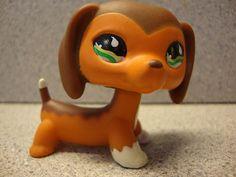 ♥ Littlest Pet Shop Lot ♥ Dachshund 675 | eBay