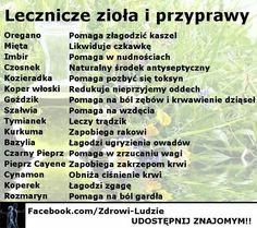 Lecznicze zioła i pr