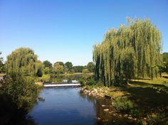 Cedar Park, Allentown, PA