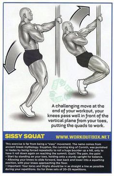 Sissy Squat - Leg Butt Workouts Healthy Fitness Body Plan Calves - Yeah We Workout ! Leg Butt Workout, Leg Day Workouts, Squat Workout, Weight Training Workouts, Fit Board Workouts, Fun Workouts, Leg Exercises, Glute Workouts, Workout Body