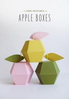 Коробочка яблоко