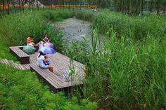Gallery of Minghu Wetland Park / Turenscape - 8 - Image 8 of 23 from gallery of Minghu Wetland Park / Turenscape. Photograph by Turenscape - Rain Garden, Water Garden, Chillout Zone, Wetland Park, River Park, Water Management, Urban Park, Landscape Architecture Design, Parking Design