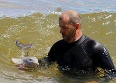 Funny pictures about Cute little baby dolphin. Oh, and cool pics about Cute little baby dolphin. Also, Cute little baby dolphin photos. Cute Baby Animals, Animals And Pets, Funny Animals, Animal Babies, Wild Animals, Strange Animals, Jungle Animals, Cute Little Baby, Cute Babies