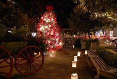 Enjoy Christmas in Savannah for the holiday season, plus New Years Eve celebrations. Find events, festivities, and things to do in Savannah in the win. - My Winter Break 2020 Savannah Events, Downtown Savannah, Visit Savannah, Savannah Chat, Savannah Georgia, Christmas Events, Christmas Travel, Christmas Vacation, Christmas Things To Do